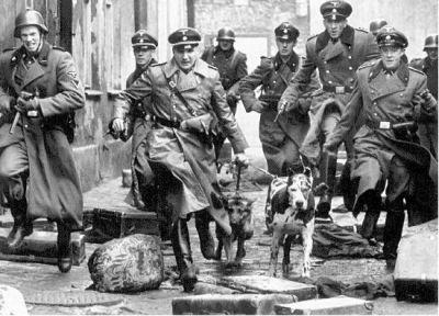 Chasing Jews 2